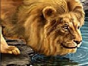 Play Big thirsty lion slide puzzle now