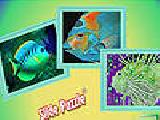Play Nteresting ocean fishes puzzle now