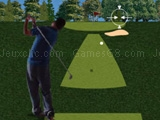 Play Flash golf 3D now