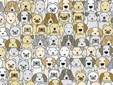 Jugar Find the pug now