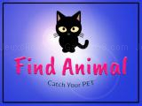 Play Findanimalio now